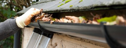 Residential<br />Gutter Cleaning