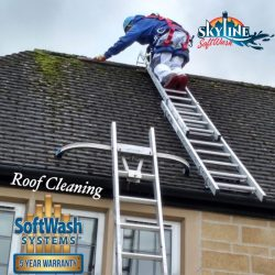 Ladder Safte System for Roof Cleaning, SkyLine SoftWash lead the way in Roof cleaning in Gloucester